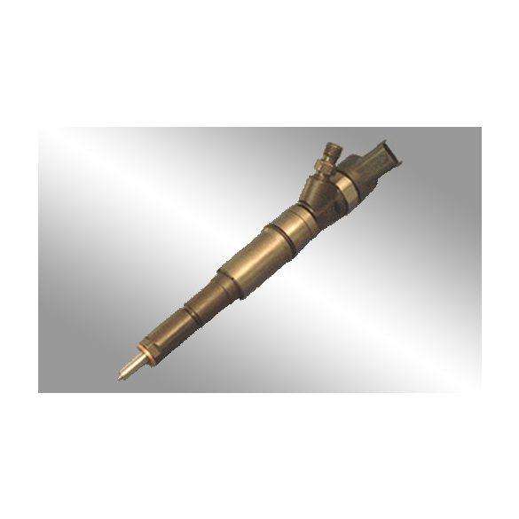 0445110049 Common Rail injektor