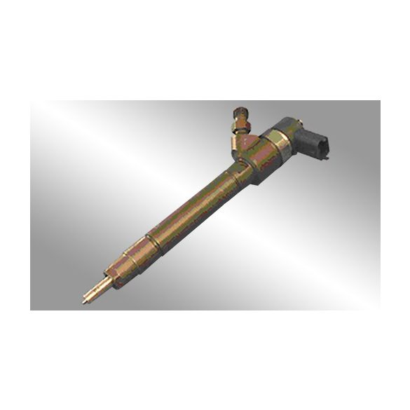 0445110077 Common Rail injektor