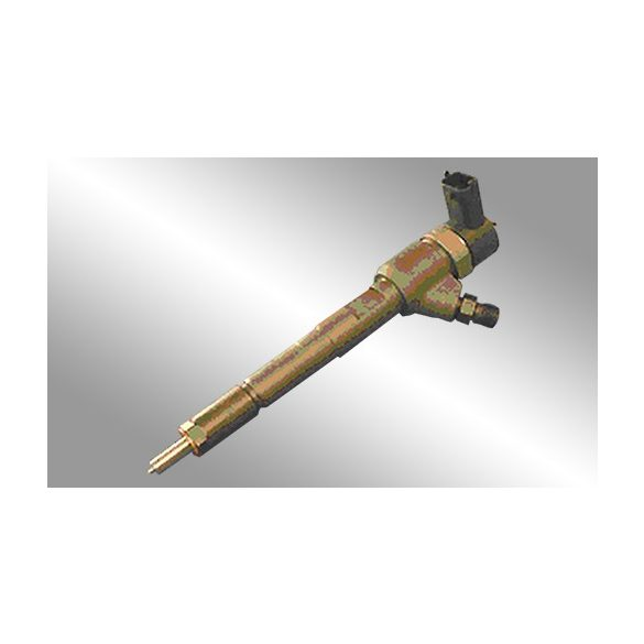 0445110083 Common Rail injektor